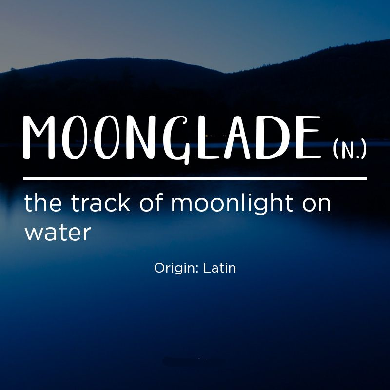 Moonglade noun the track of moonlight on water word for Forward dictionary
