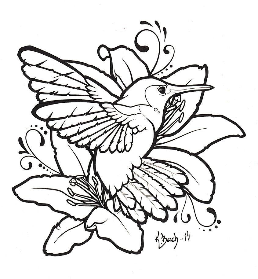 Three Colibri Birds With Nest, Hummingbird Page For Adult ... |Hummingbird Nest Coloring Page