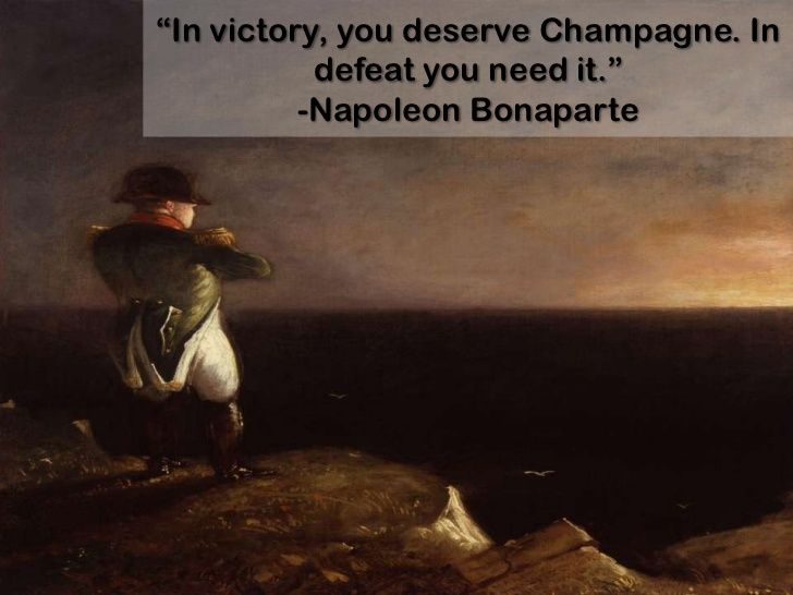 What are the causes for the Defeat of Napoleon Bonaparte?