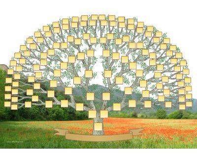 family tree diagram blank