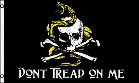Don T Tread On Me Pirate Flag 3x5ft 9 94 1 Pc Polyester Flag Reinforced Hemming 2 Metal Grommets 3x5ft P Pirate Flag Dont Tread On Me Jolly Roger Flag