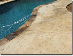 salt finish | pool | pinterest | concrete, decking and backyard
