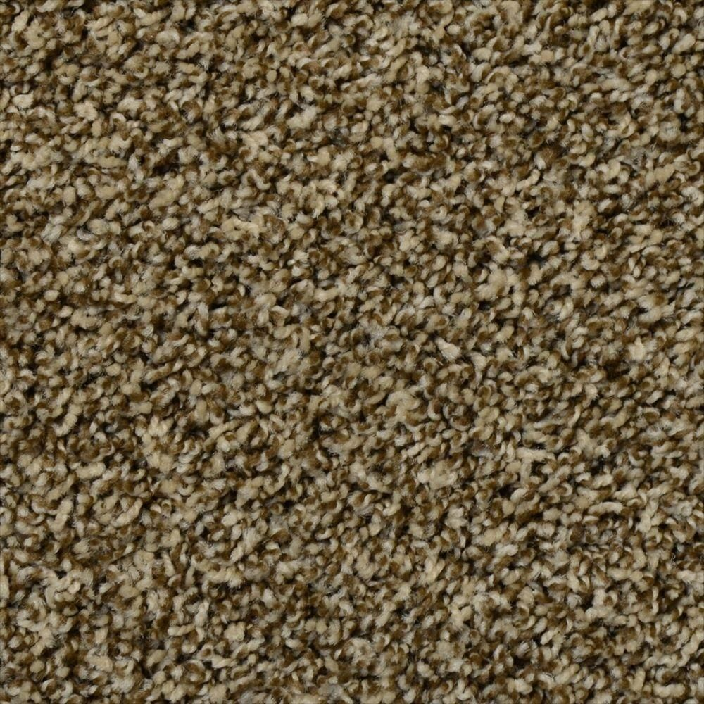 Peace Of Mind Color Espresso Twist 12 Ft Carpet 1080 Sq Ft Roll 18032 208 1200 The Home Depot Carpet Mindfulness Peace Of Mind