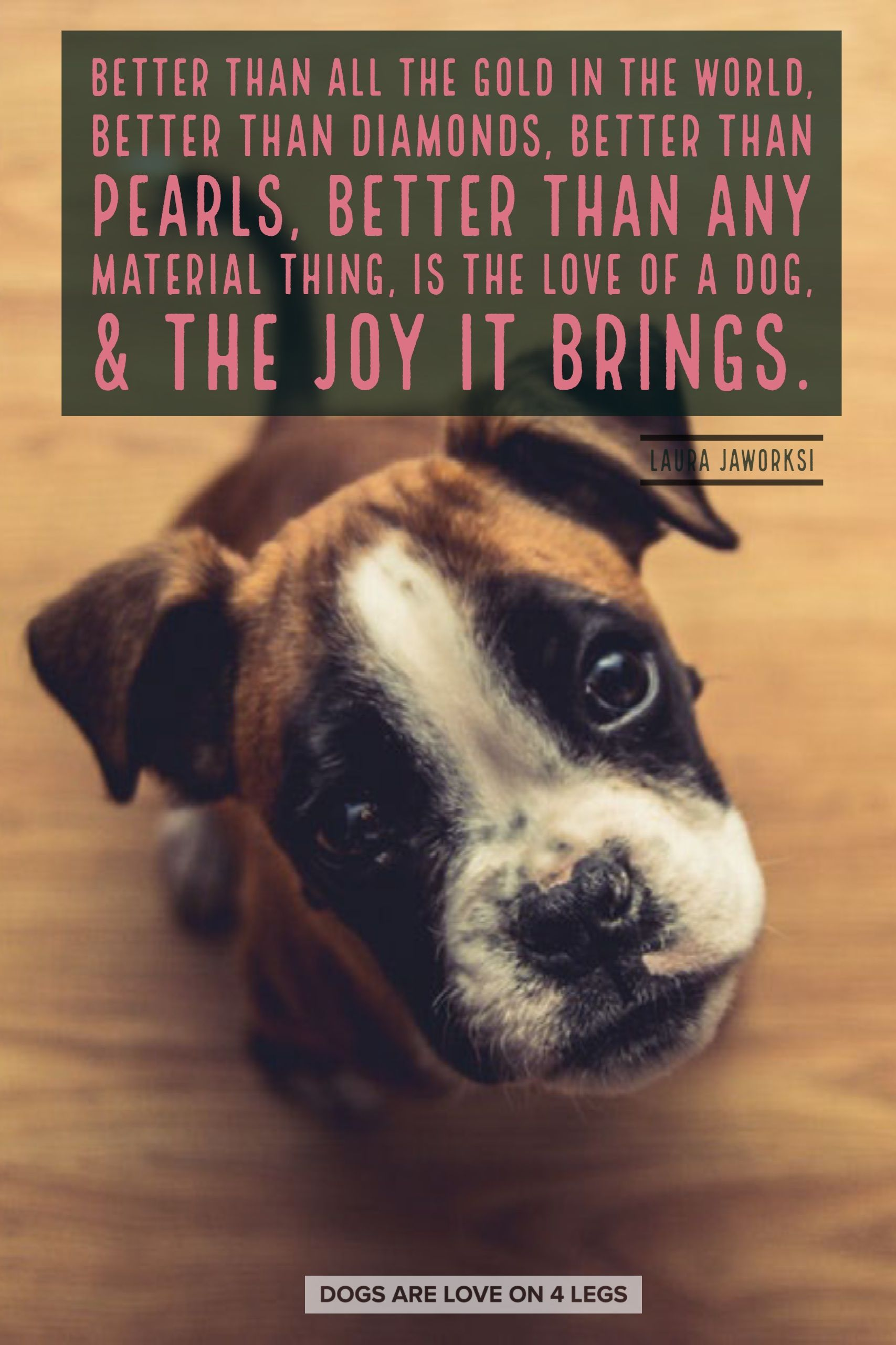 Better Than All The Gold In The World Dog Dog Quotes Inspirational Quotes Funny Quotes Life Quote Dog Quotes Inspirational Dog Quotes Funny Dog Quotes