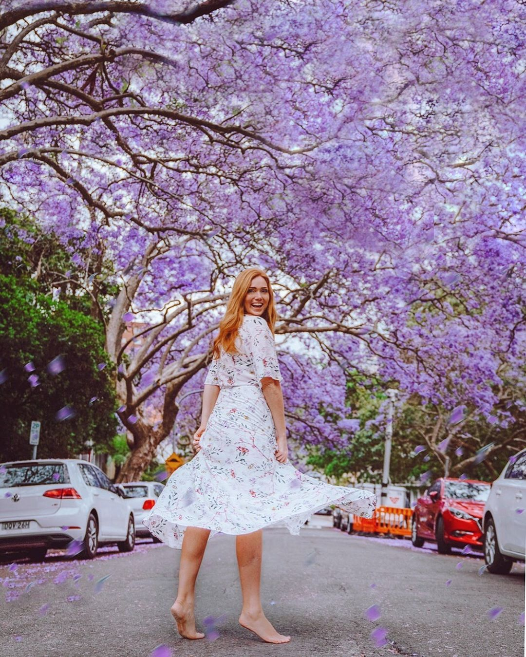 Most Instagrammable Photo Spots In Sydney The Ginger Wanderlust Photo Spots Cherry Blossom Japan Green Travel