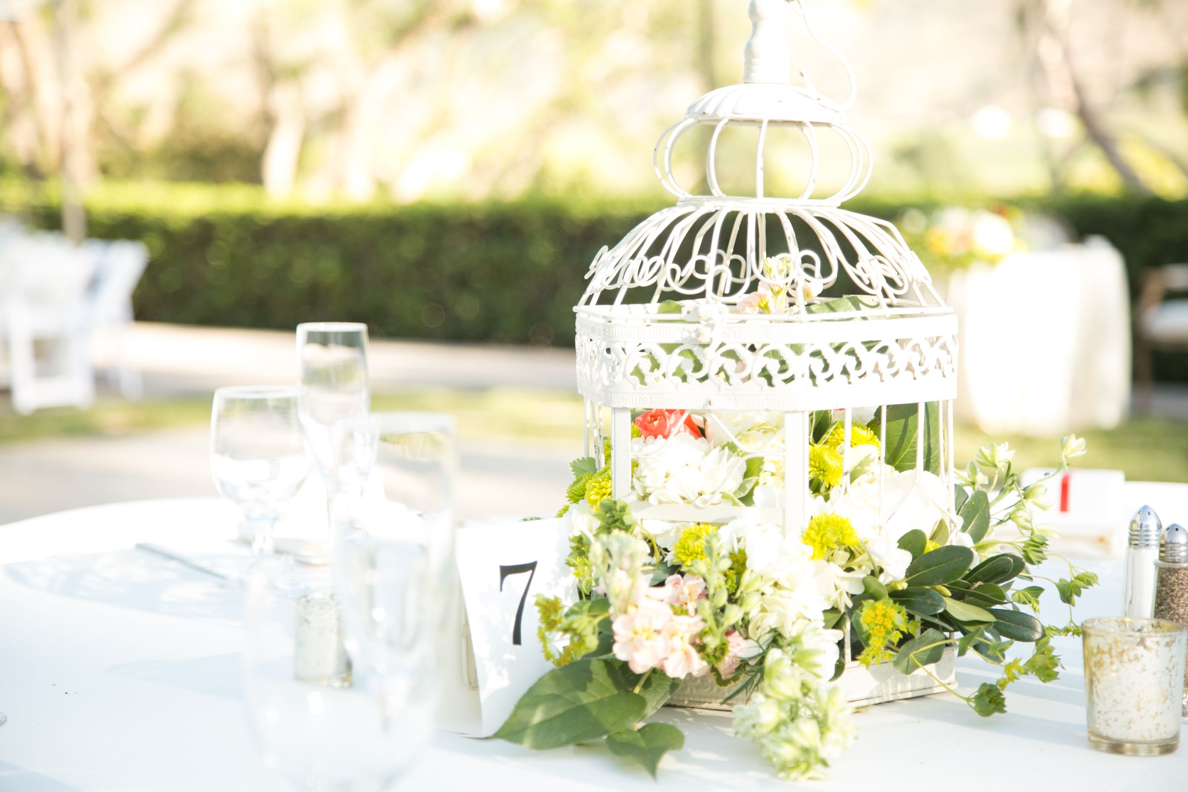 Simple and inexpensive wedding centerpiece with birdcages. Love bird ...