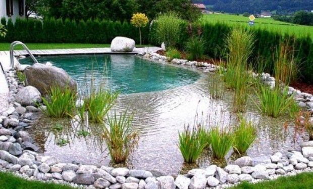 Piscina piscine ideas de piscina piscinas naturales e for Decorazioni piscina