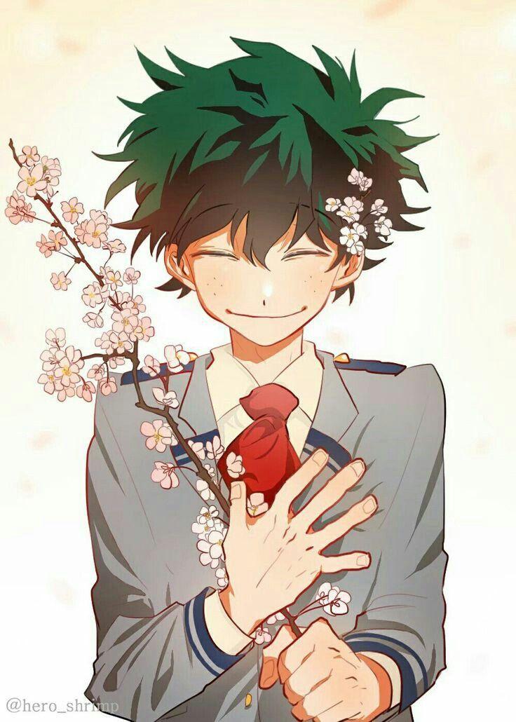 Boku No Hero Academia Izuku Cute Smile My Hero Boku No Hero Academia Hero