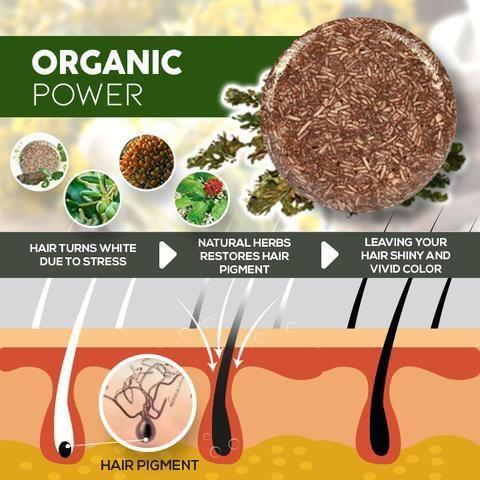 Organic Darkening Shampoo Bar Organic Hair Shampoo Bar Damaged Hair Follicles