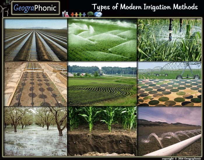 Free Quiz Game : Types of Modern Irrigation Methods Types of ...