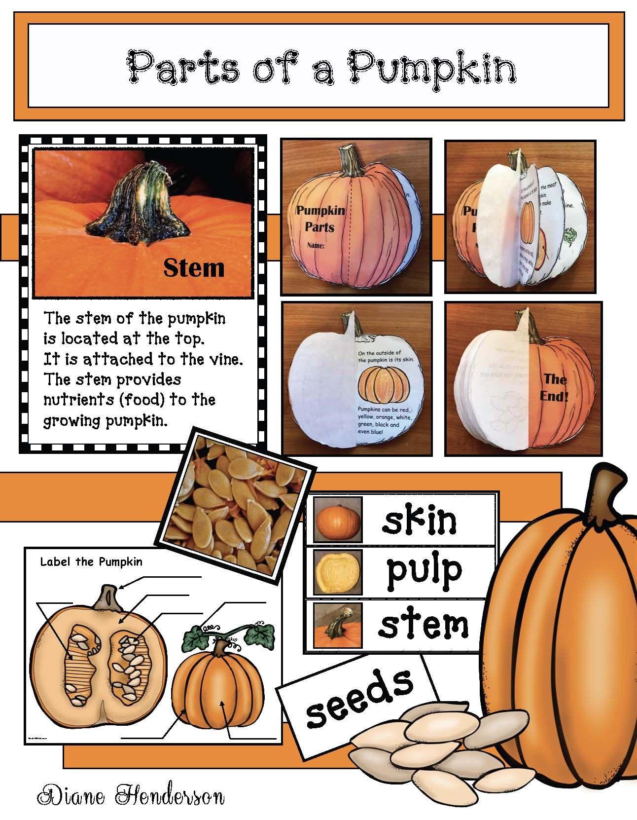 Pumpkin Crafts Pumpkin Activities Pumpkin Centers Label