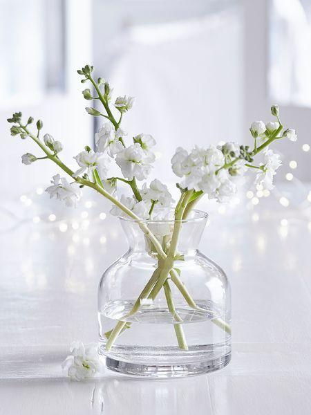 Glass Jar Vase Low Bedroom Ideas Pinterest House Room And