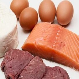Feeding Your Dog a Raw Diet ~Step by Step (With images ...