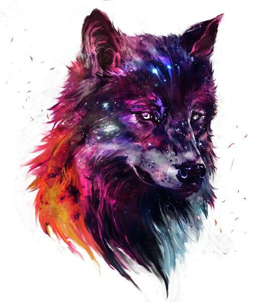 Photo of Wolf