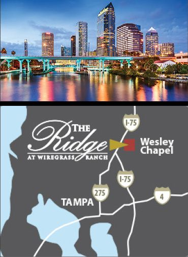 The Ridge At Wiregrass Wesleychapel Florida Welivehere Www