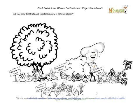 Where do fruits and veggies grow? On trees! On bushes! On