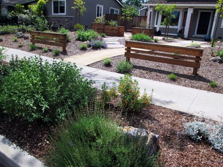 Lawn Replacement, Drought Tolerant Garden Design, Mountain View, CA |  Taproot Garden Design