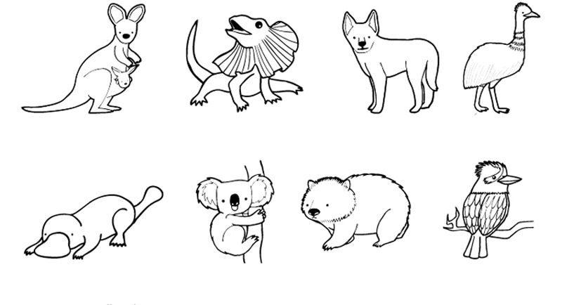 Animales de Australia: dibujo para colorear e imprimir | Australia ...