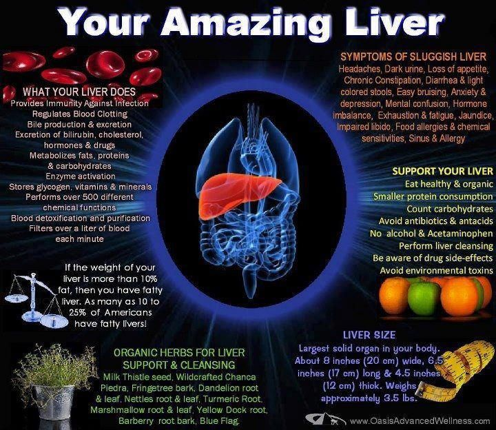"They say ""Happy Liver, Happy Life"" A healthy liver is SO important. Beets are wonderful for helping to tone the liver.  What are YOU doing for your amazing liver?"
