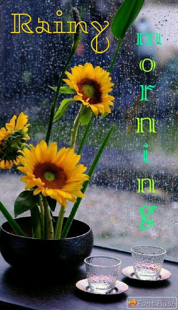 Pin by 🌷ANMOL🌷 on Happy Rainy day Rainy morning, I love