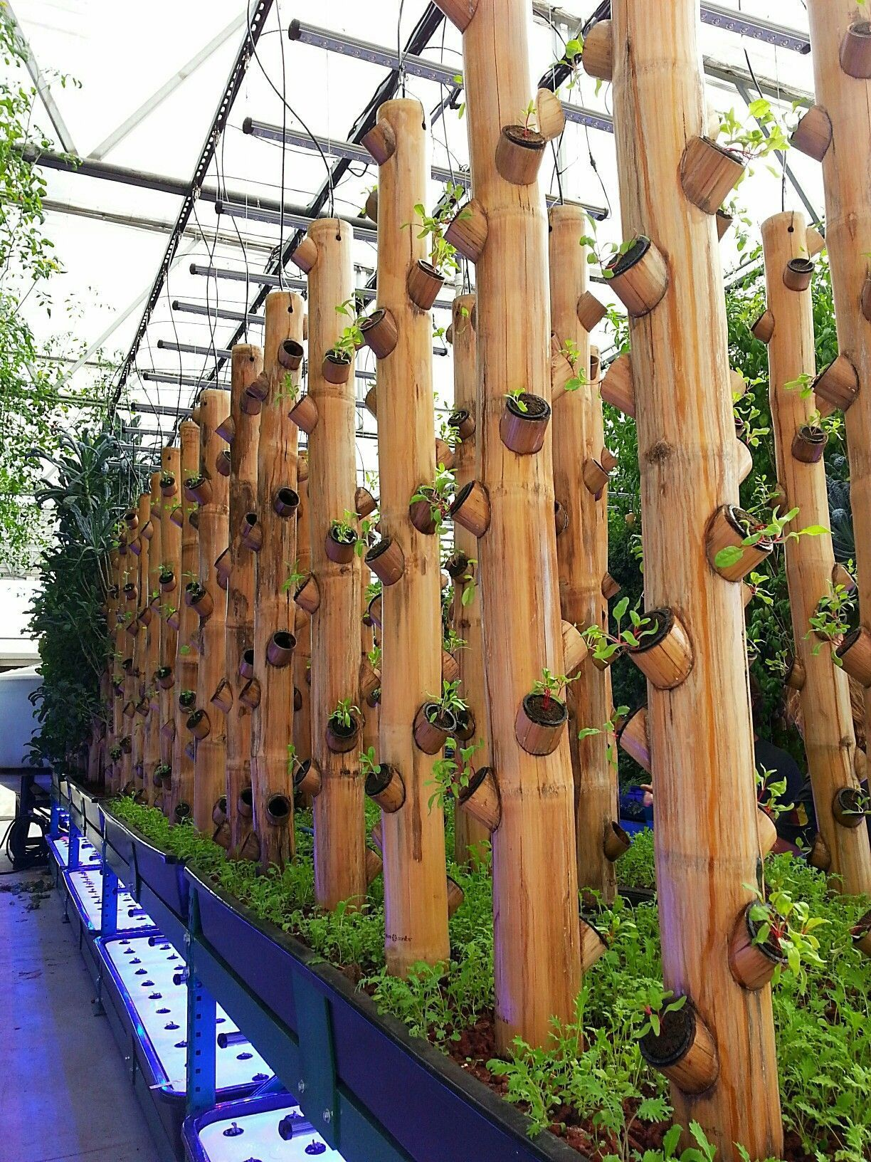 Bamboo gardening greenhouse with hydroponics … #AquaponicsTips ...