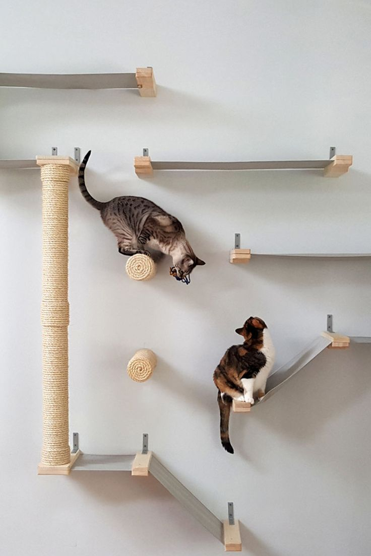 They Re Just Working Off Holiday Treats Modern Cat Tree Cat Climbing Wall Cat Room