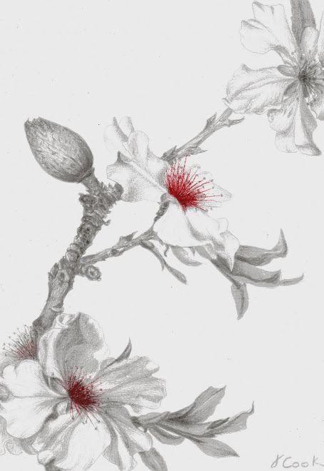 cherry flower diagram