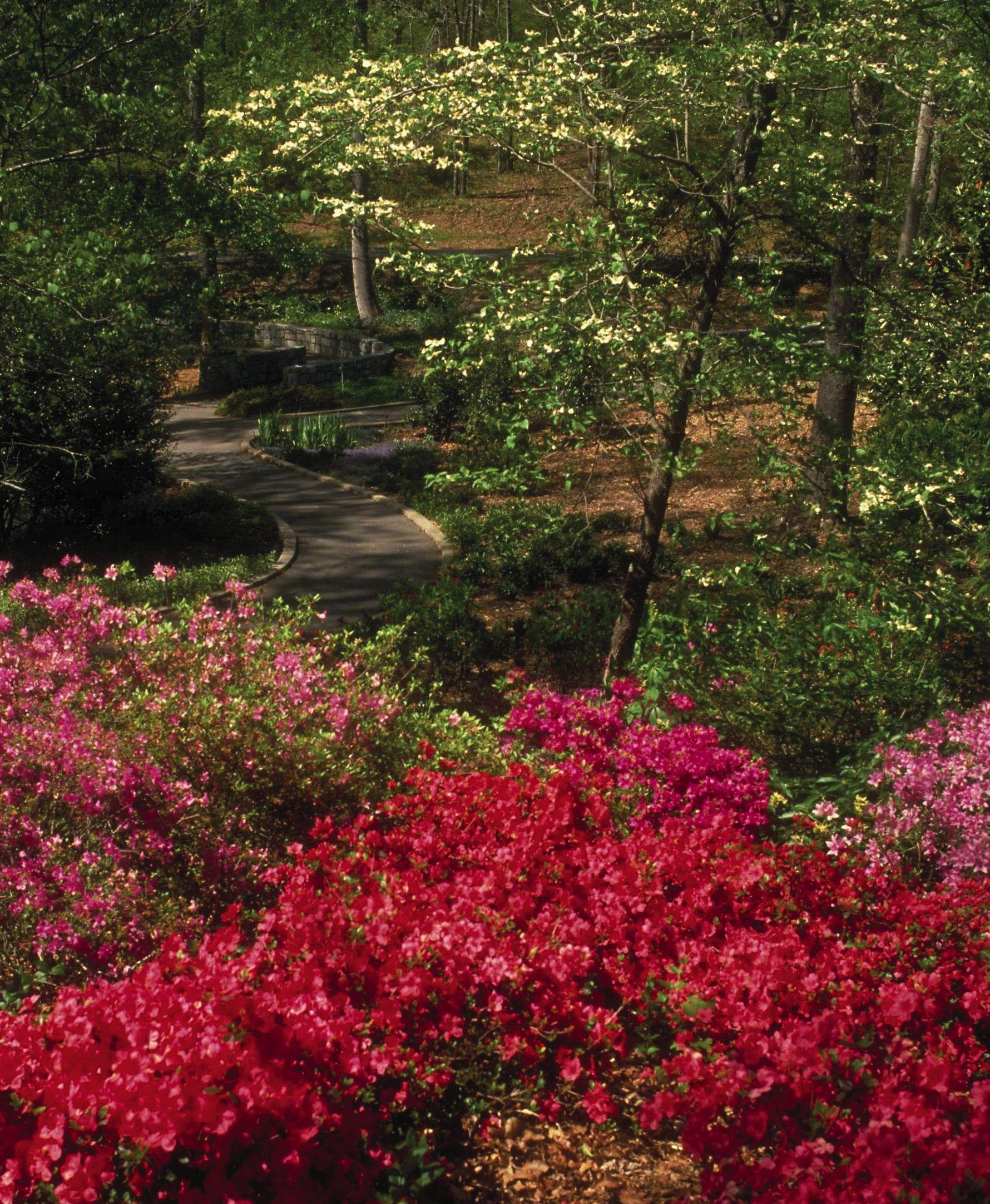 georgia gardens | georgia s gem the state botanical garden in athens ...