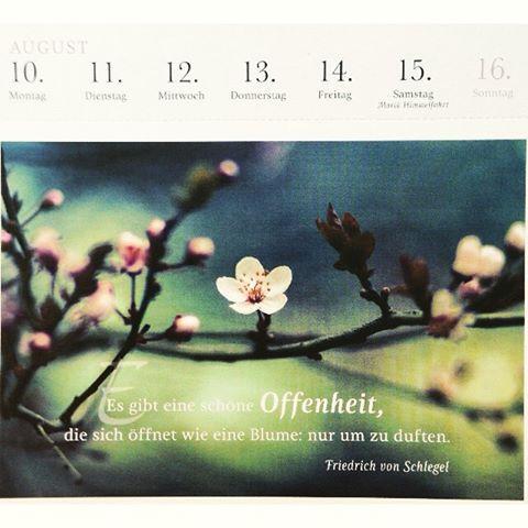 schöne sprüche für einen kalender