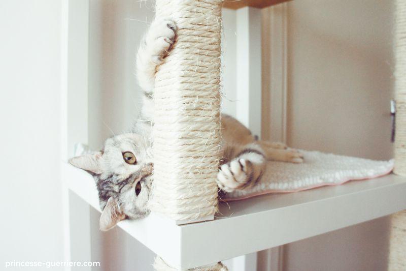 arbre chat ikea diy g nial petits chats diy arbre. Black Bedroom Furniture Sets. Home Design Ideas