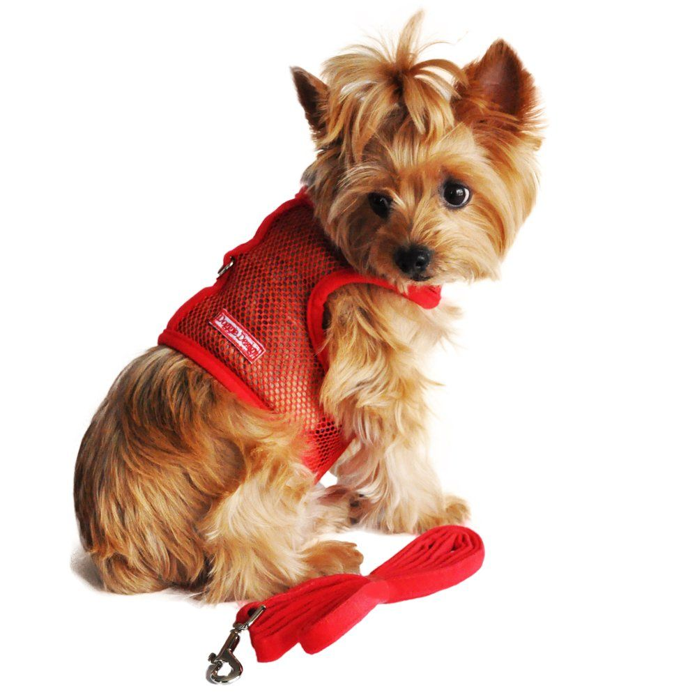 Doggie Design Cool Mesh Dog Harness S Solid Red Learn More By