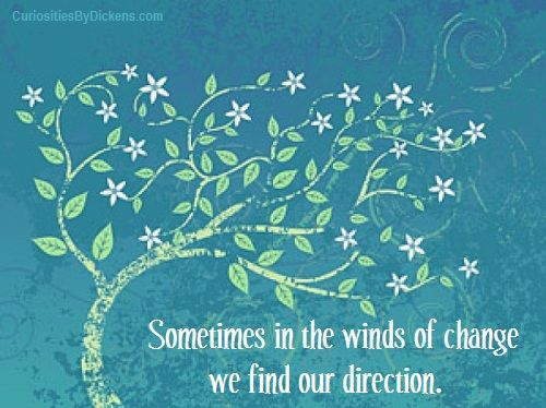 Sometimes in the winds of change we find our direction. ~ Author ...