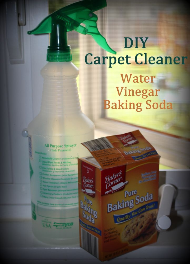 Cleaning carpets with simple household ingredientswater