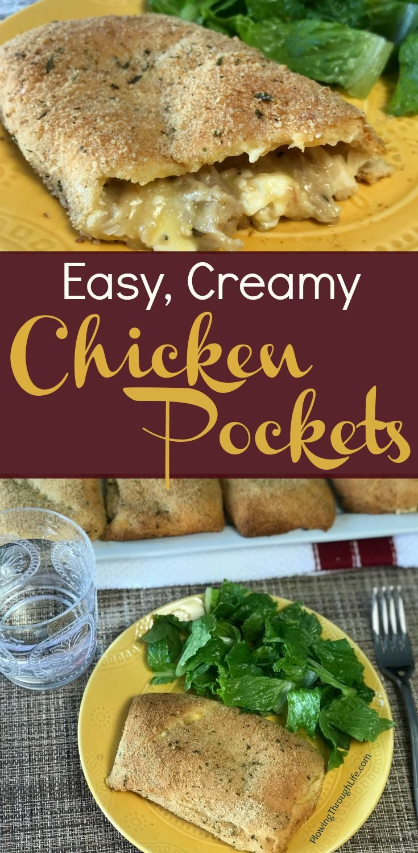 leftover chicken recipe idea and snack idea for teenagers