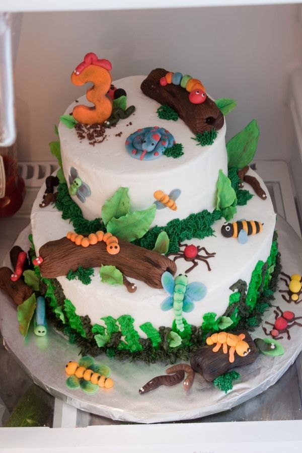 Groovy Bugs Dirt And Worms Toddler Birthday Cakes Bug Birthday Cakes Funny Birthday Cards Online Overcheapnameinfo