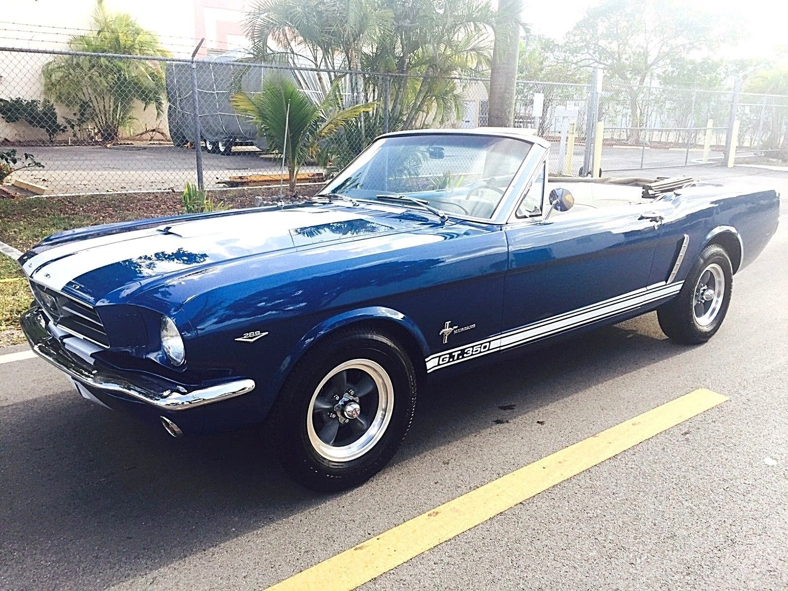 1965 ford mustang shelby gt350 package us ford mustang pinterest ebay 1965 ford mustang shelby gt350 package gorgeous 1965 ford mustang c code freerunsca Choice Image
