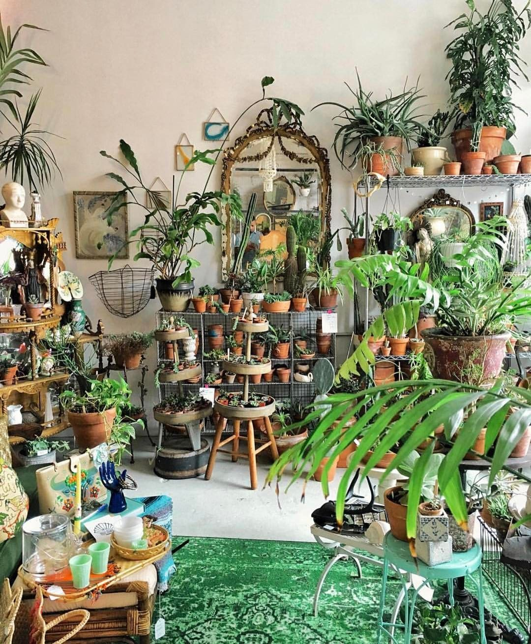 instagram room with plants green interiors garden room on sweet dreams for your home plants decoration precautions and options id=93775
