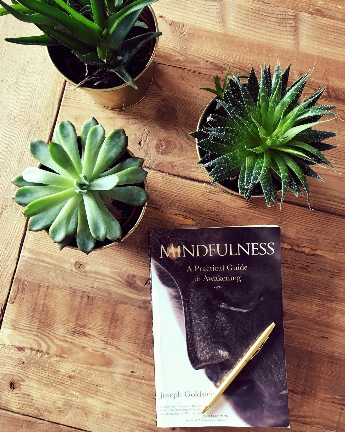 Mindfulness A Practical Guide To Awakening