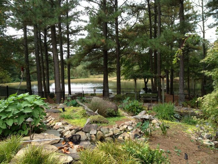 Beautiful natural planting on one of our LED lighting projects
