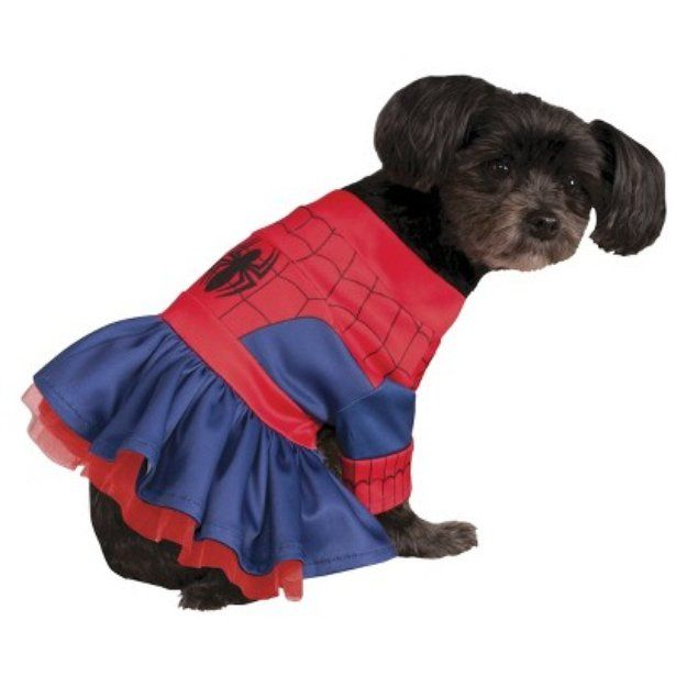I'm learning all about Spiderman Marvel Spider Girl Pet Costume - Medium at @Influenster!