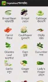 English Bengali Grammar Vegetable English To Bangla Meaning English Grammar Book Learn English Vocabulary English Grammar