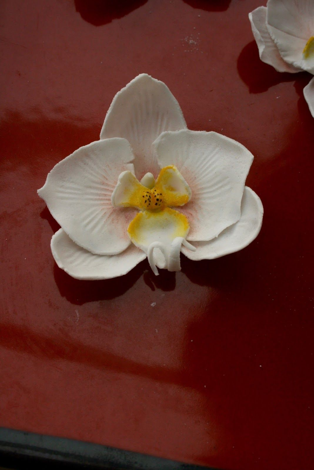Orchidee En Pate A Sucre Tuto Phalaenopsis Blanche Patisserie