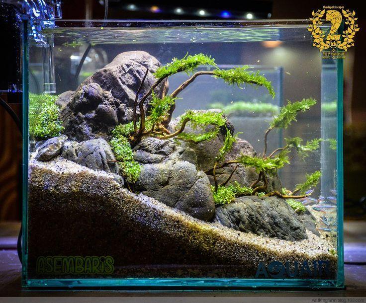 Diy Fish Tank River Rock Decor Aquascaping Ideas Aquarium On Aquatic
