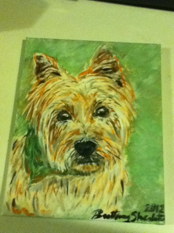 Acrylic Painting Of Bentley Carin Terrier Painting Terrier
