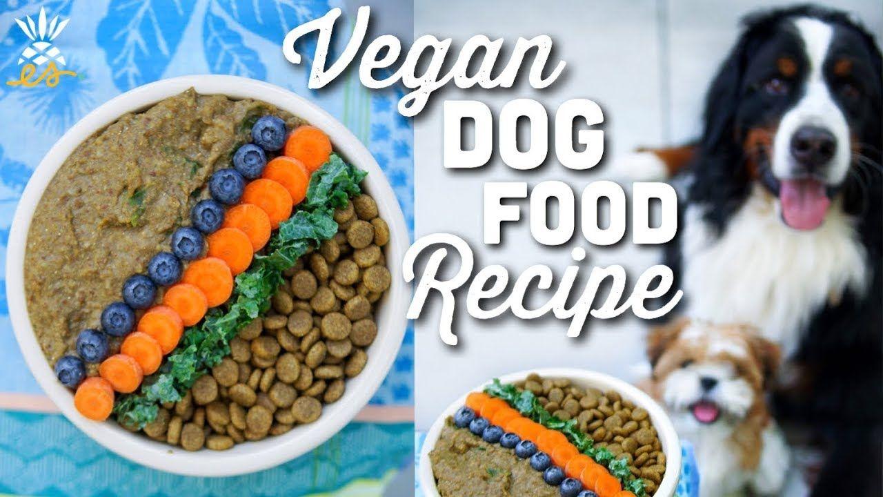 What We Feed Our Dog Homemade Vegan Dog Food Recipe Eatmoverest