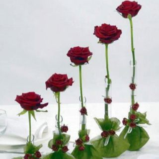 Roses for the table