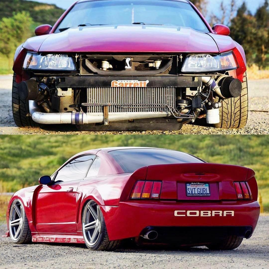 Mustang Cobra Ford Modified Slammed Ford Mustang Cobra Mustang Cars Mustang Cobra