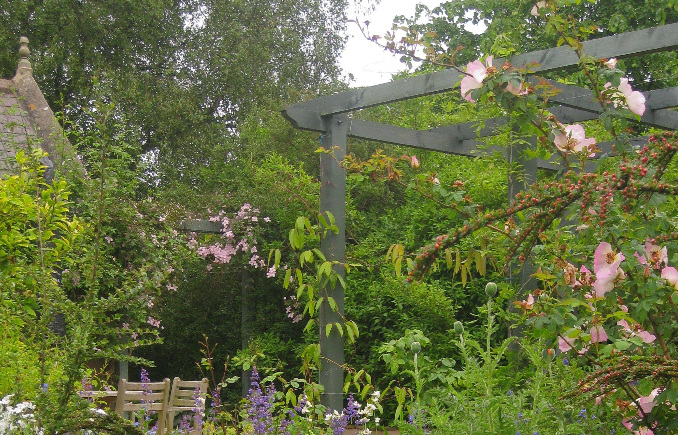 Cottage garden in Dirleton, Scotland by Goose Green Design