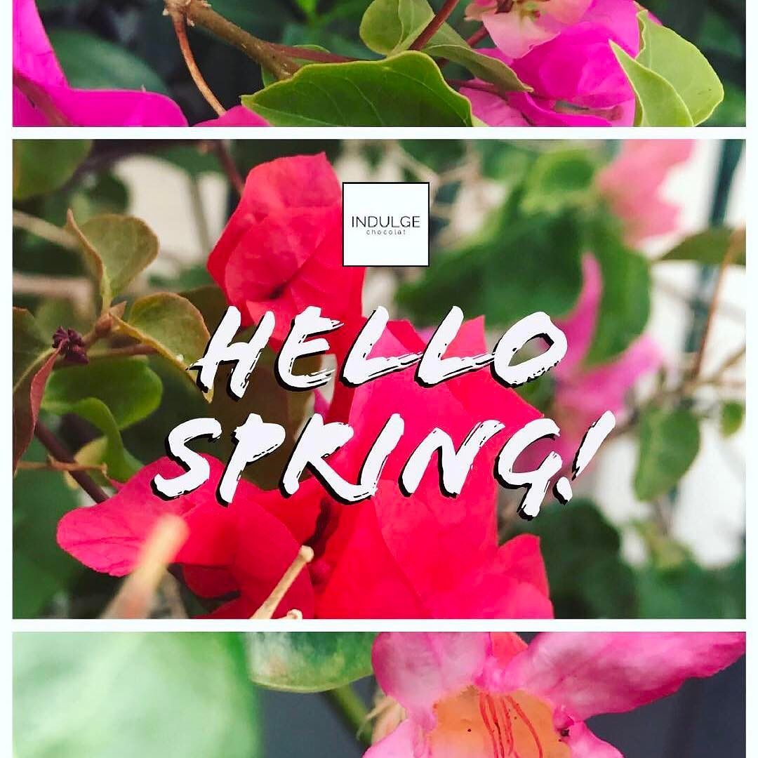 It's officially spring! Flowers  blooming in our garden the herbs are fresh in our harvest and a new collection is coming out this week stay tuned.  #firstdayofspring #springintospring #indulgechocolat