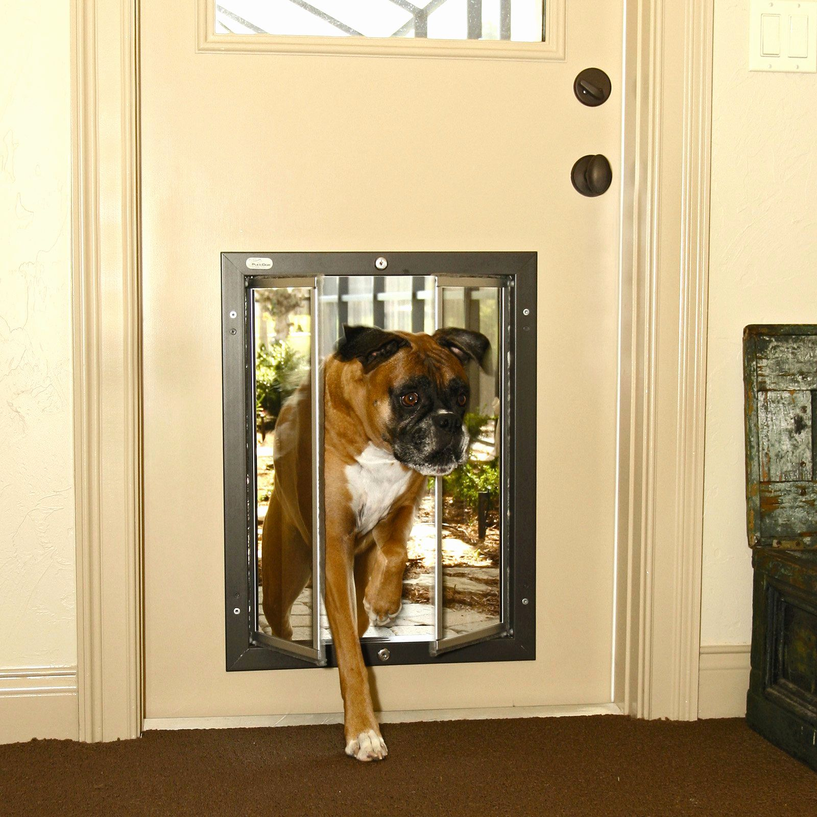 I Dont Know Why I Waited So Long To Get A Dog Door Installed In A